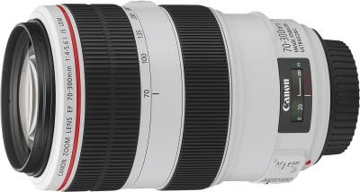 EF 70-300MM 1:4.0-5.6 L IS USM