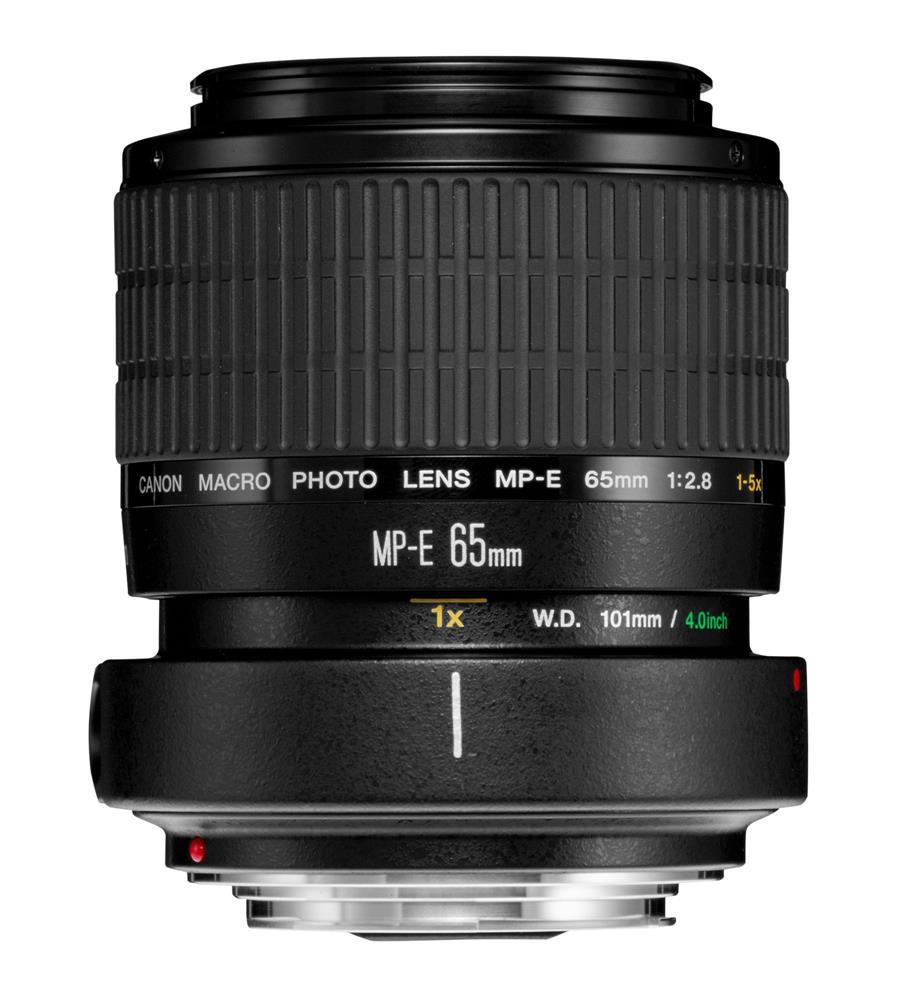 Canon MP-E 65 mm 1:2,8 Lupenobjektiv 1x-5x